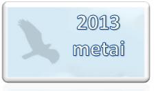 2013 naujas