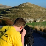 BirdLife Springwatch Camp volunteer looking at Marsh Harriers migrating in off sea Malta April 2013