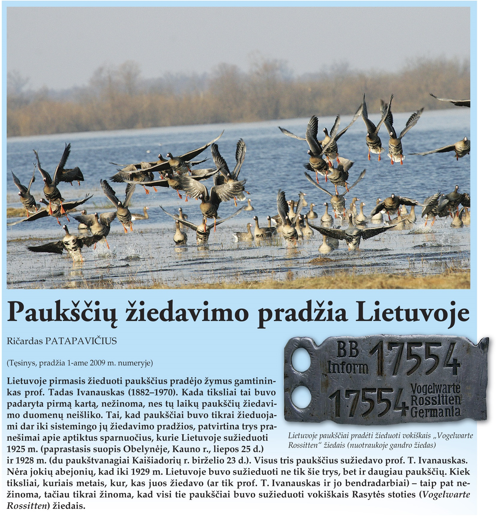 Zurnalas apie gamta 2009 nr3.indd