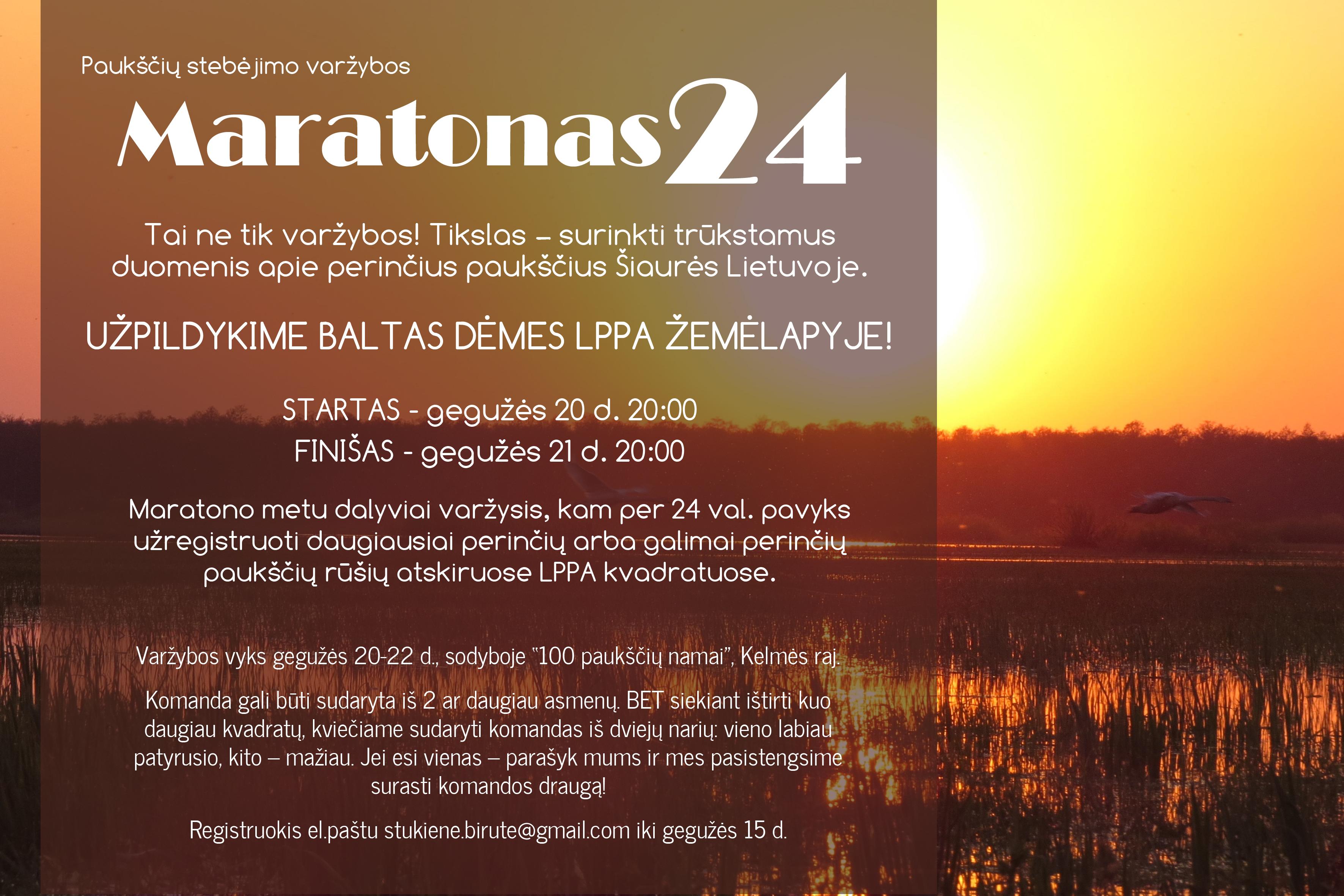 Maratonas24v2