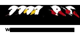 SSG_logo
