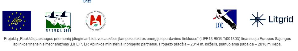 logotipai_ELECTROGRID_NAUJIENOMS